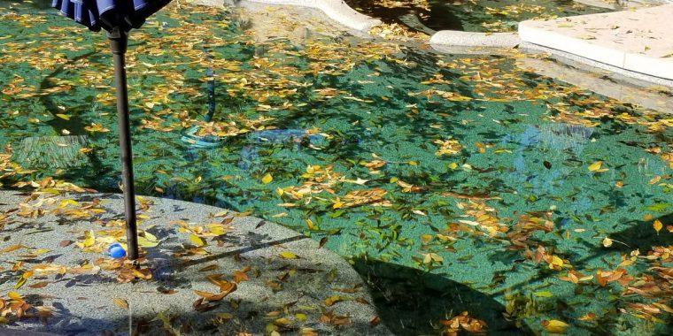 pool -01- before