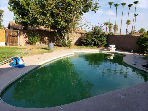 green pool - before