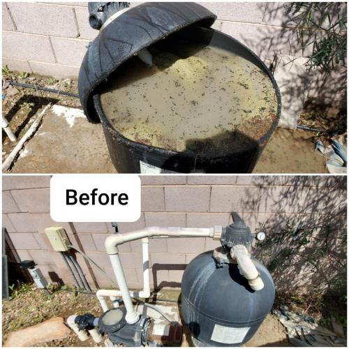 Before Pool Filter
